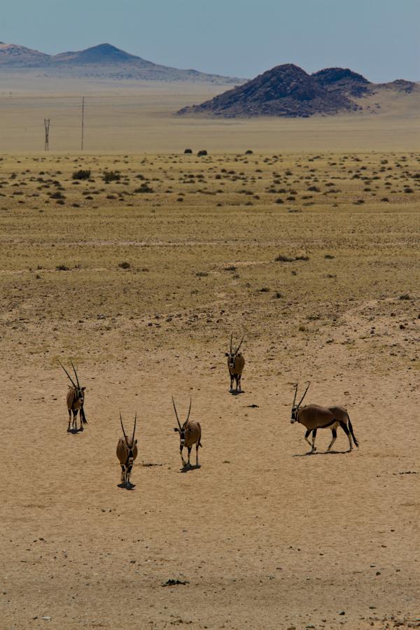 Godwana Canyon Village-Lüderitz-6