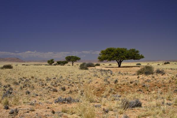 Godwana Canyon Village-Lüderitz-8
