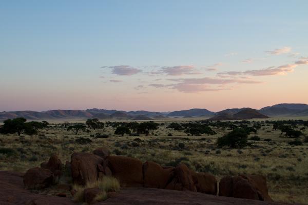 Koiimasis-DesertHomestead-1