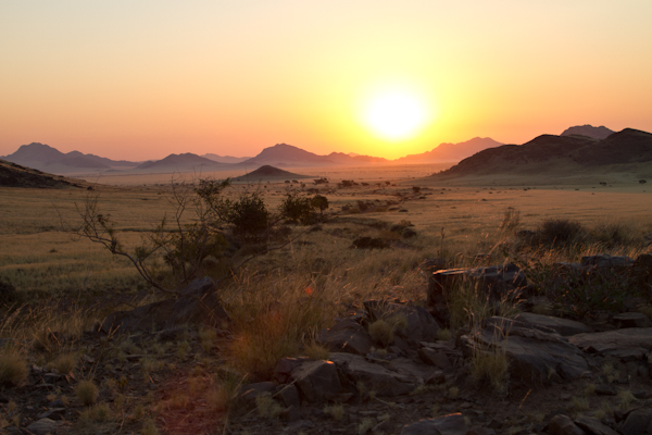 Koiimasis-DesertHomestead-13