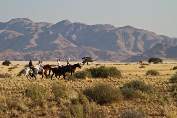 Koiimasis-DesertHomestead-7